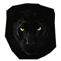 panther-icon